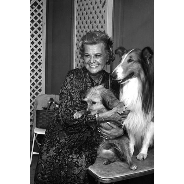 Rose Marie with Lassie Poster