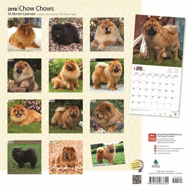Chow Chows 2018 Wall Calendar