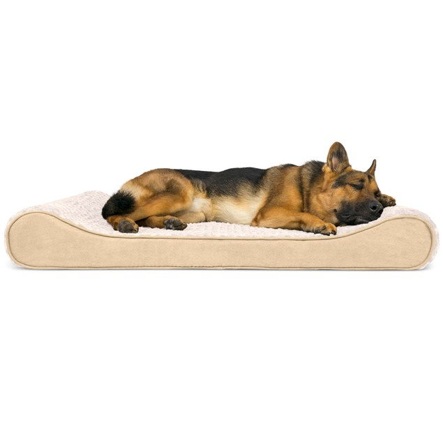 Minky Plush & Velvet Luxe Lounger Orthopedic Pet Bed