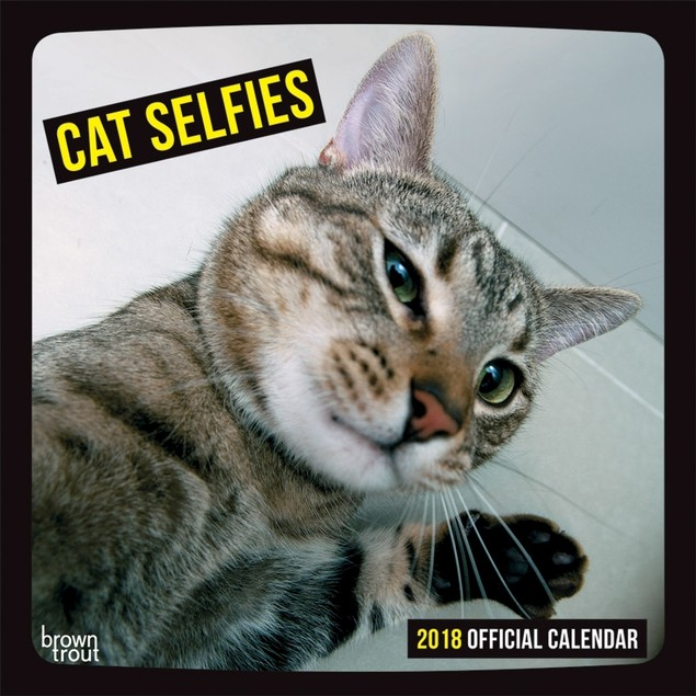 Cat Selfies Wall Calendar, Funny Cats by BrownTrout