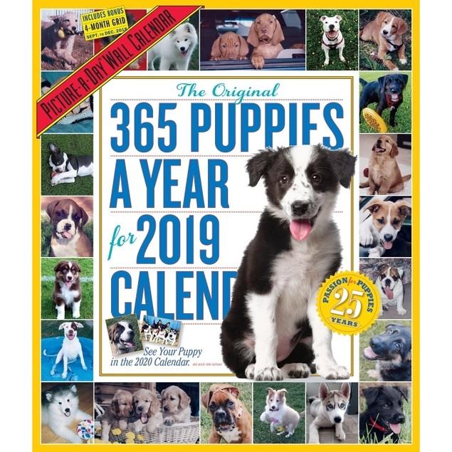 365 Days of Puppies Wall Calendar, Cute Puppies by Calendars