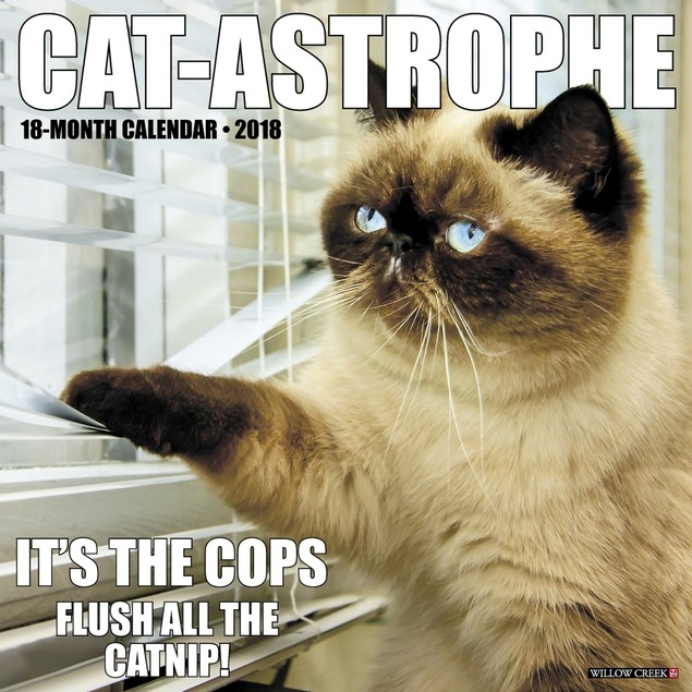 Cat-Astrophe Wall Calendar, Funny Cats by Calendars