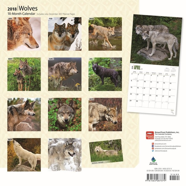 Wolves Wall Calendar, Wolves by BrownTrout