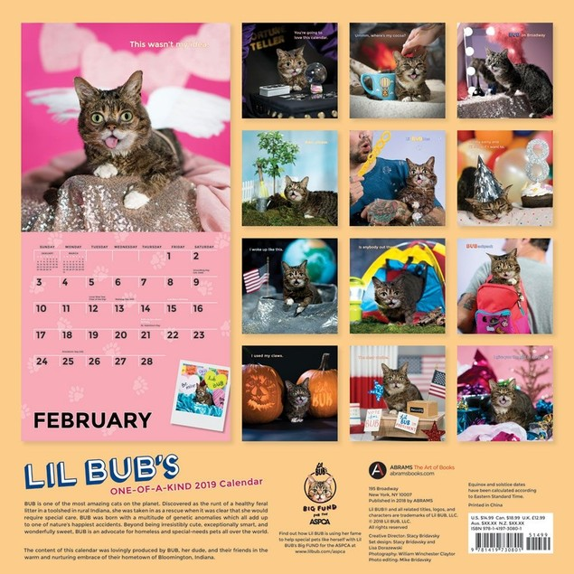 Lil Bub's Wall Calendar, Funny Cats by Calendars