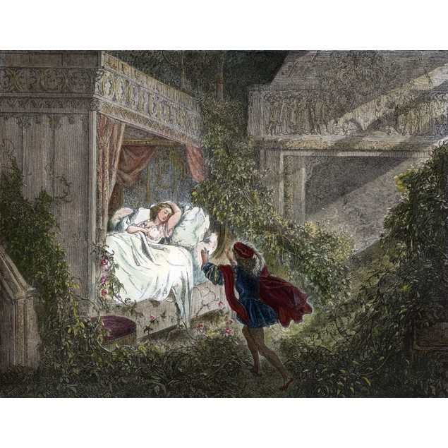 Perrault: Sleeping Beauty. /Nthe Prince Discovering Sleeping Beauty. Colore