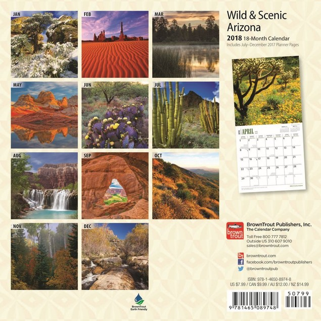 Arizona Mini Wall Calendar, Arizona by BrownTrout