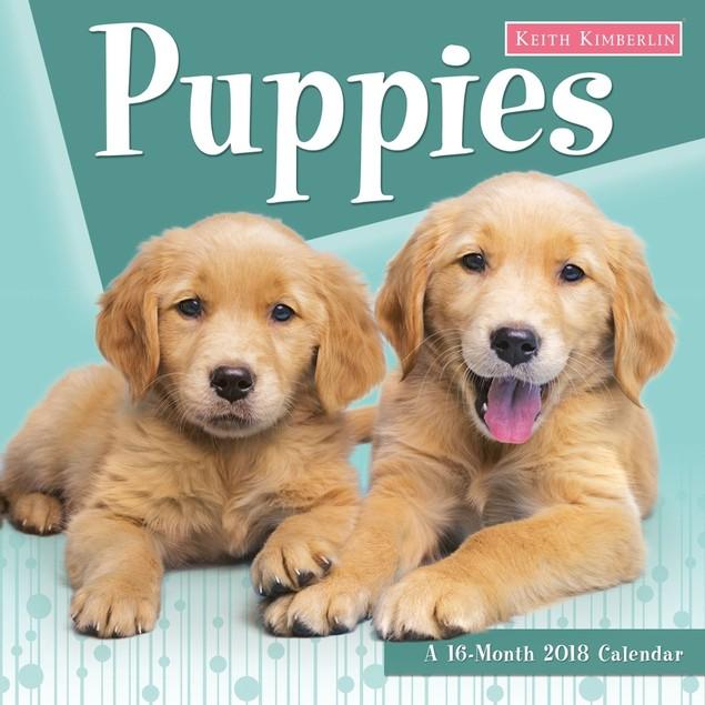 Keith Kimberlin Puppies Wall Calendar, Cute Puppies by Calendars