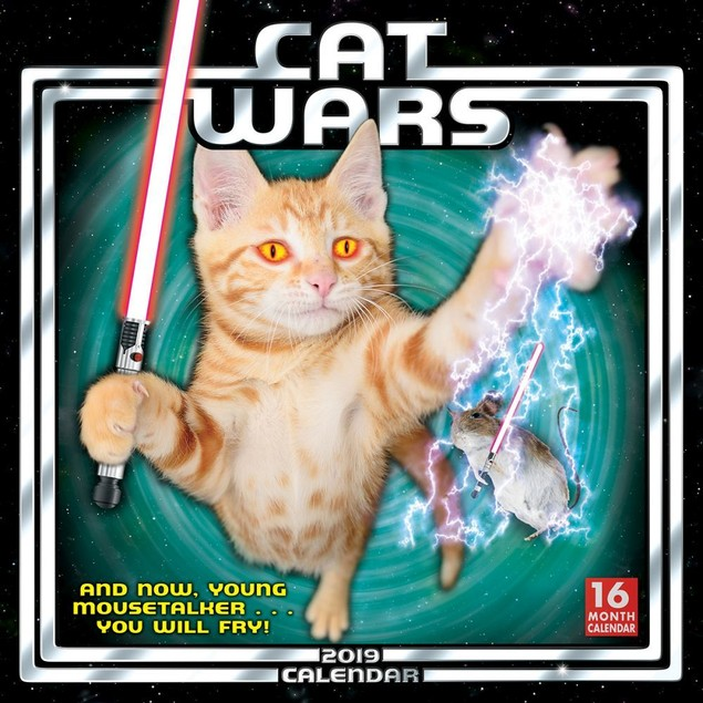 Cat Wars Wall Calendar, Funny Cats by Calendars
