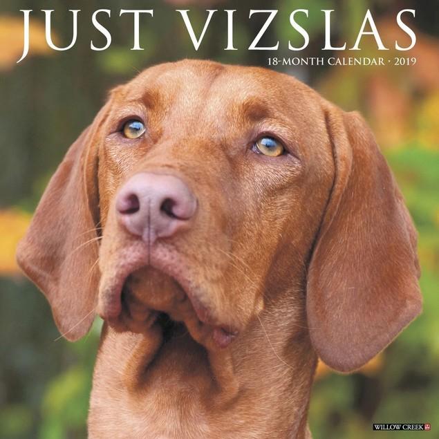 Just Vizslas Wall Calendar, More Dogs by Calendars