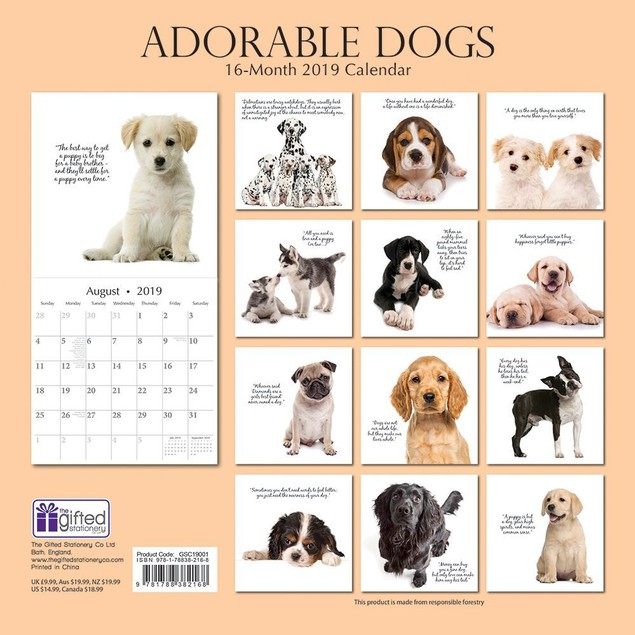 Dogs Adorable Wall Calendar, Assorted Dogs by Calendars