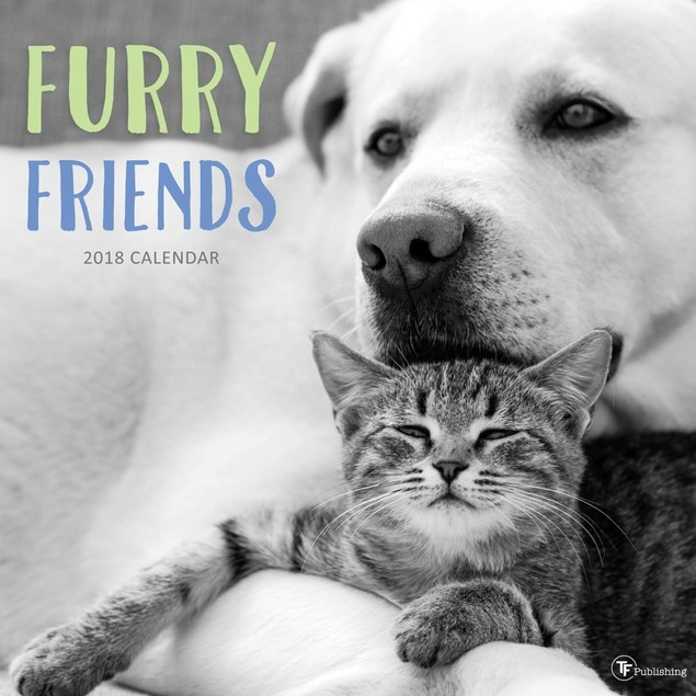 Furry Friends Wall Calendar, Baby Animals by Calendars