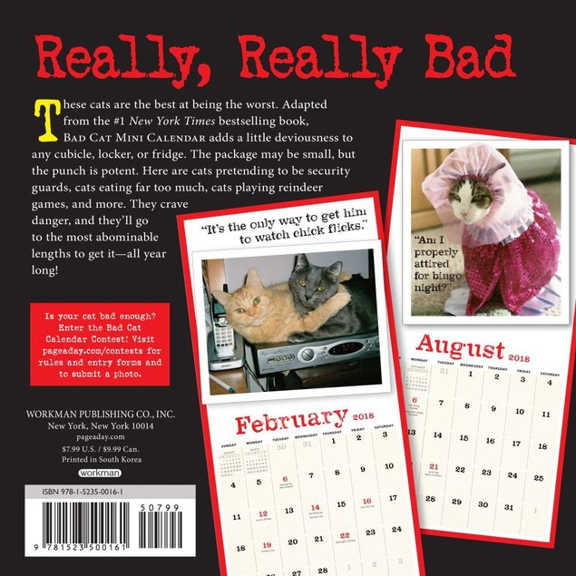 Bad Cat Mini Wall Calendar, Funny Cats by Calendars