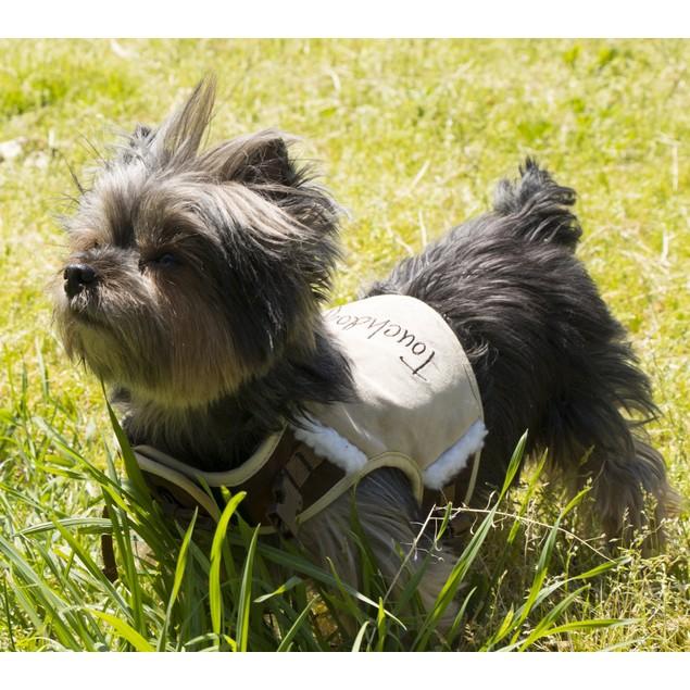 Touchdog Tough-Boutique Adjustable Fashion Dog Harness And Leash