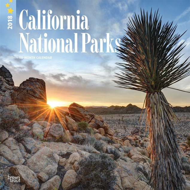 California National Parks Wall Calendar, California by BrownTrout