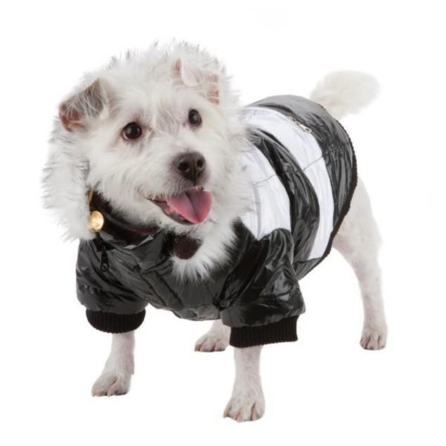 Fashion Striped Ultra-Plush Dog Parka w/ Removable Hood
