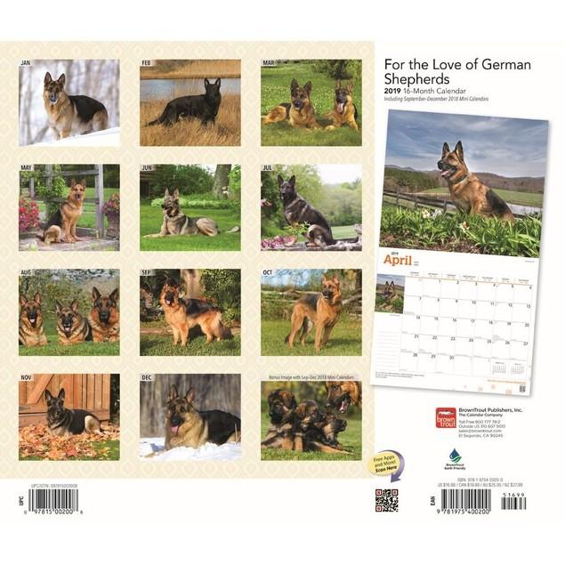 German Shepherds Wall Calendar, German Shepherd by Calendars