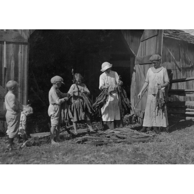 Mrs. J.L. Hazel and children stripping tobacco. A very interesting and poor