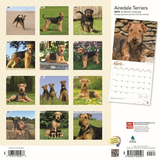Airedale Terriers Wall Calendar, Airedale Terrier by Calendars