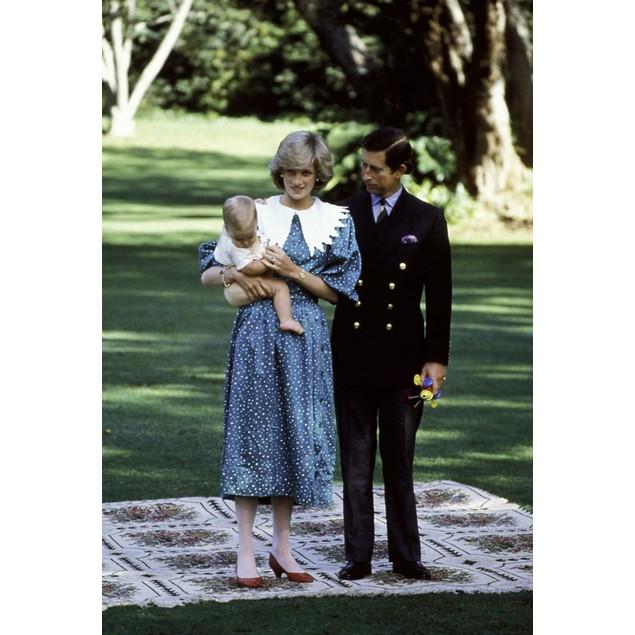 Princess Diana, Prince Charles and Prince William Poster