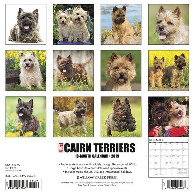Just Cairn Terrier Wall Calendar, Cairn Terrier by Calendars