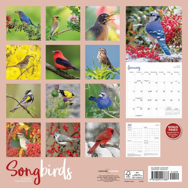 Songbirds Wall Calendar, Birds by Vista Stationery & Print Ltd