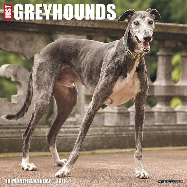 Just Greyhounds Wall Calendar, Greyhound by Calendars
