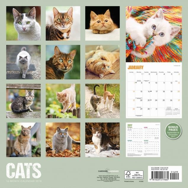 Cats Wall Calendar, Assorted Cats by Calendar Ink