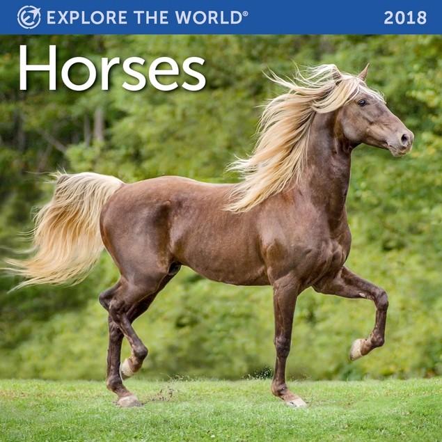 Horses Mini Wall Calendar, Horses by Vista Stationery & Print Ltd
