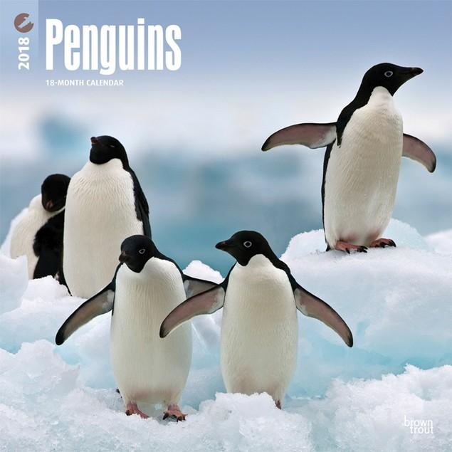 Penguins Wall Calendar, Wildlife by Calendars