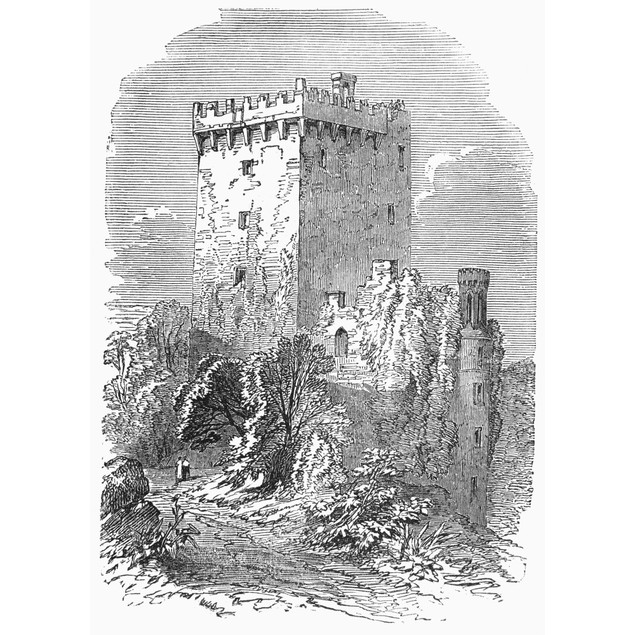Ireland: Blarney Castle. /Nblarney Castle, Near Cork, Ireland. Wood Engravi