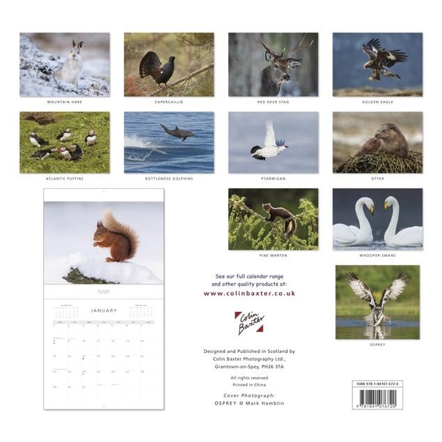Scottish Wildlife Wall Calendar, Scotland by Calendars