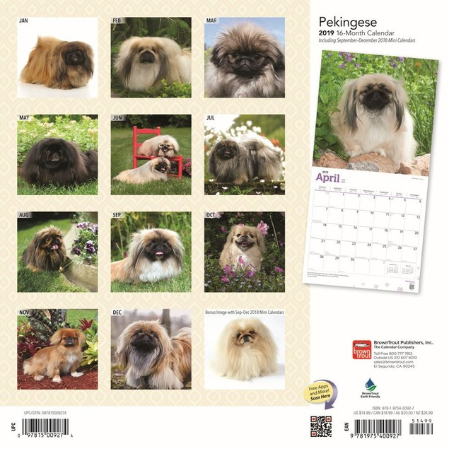 Pekingese Wall Calendar, Pekingese by Calendars