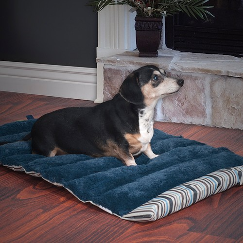 PETMAKER 24x37 Roll Up Travel Portable Dog Bed - Blue Stripe