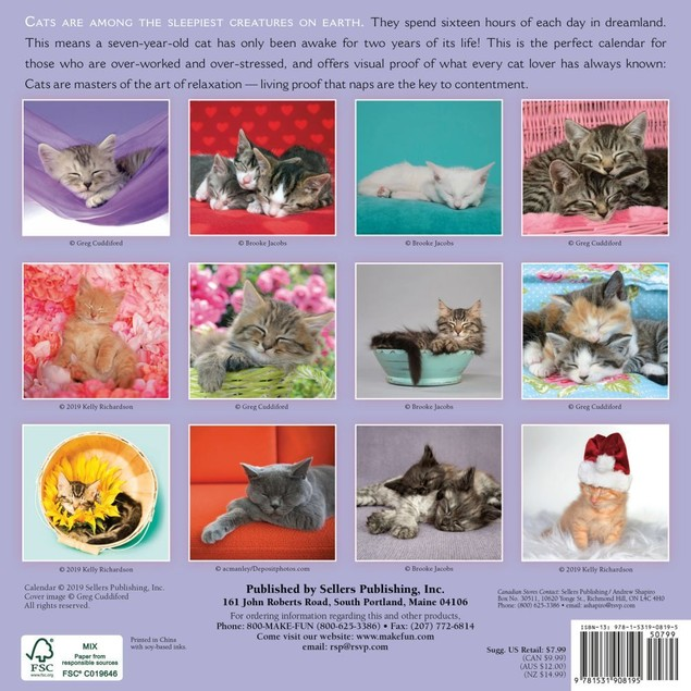Cat Naps Mini Wall Calendar, Assorted Cats by Calendars