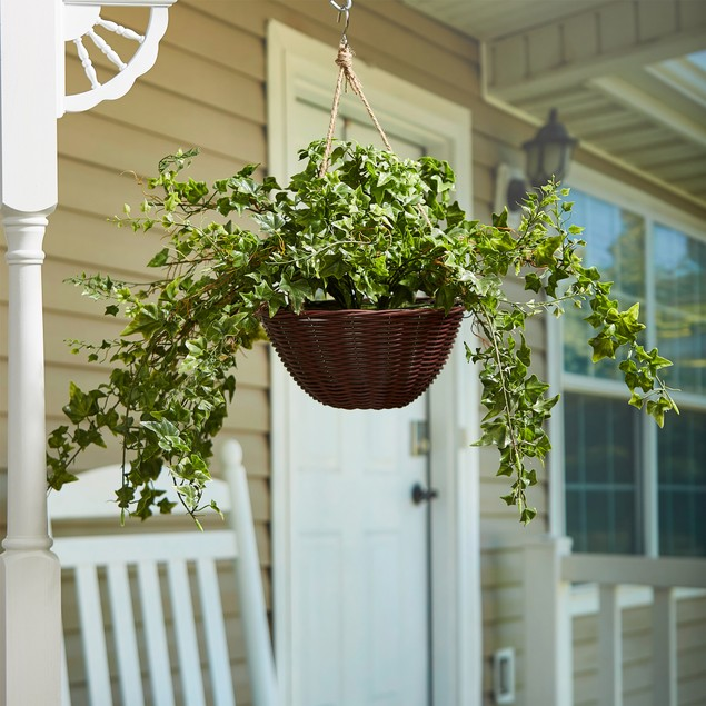 Faux English Ivy – Hanging Natural and Lifelike Artificial Arrangement and Imitation Greenery with Basket for Home or Office Dcor by Pure Garden