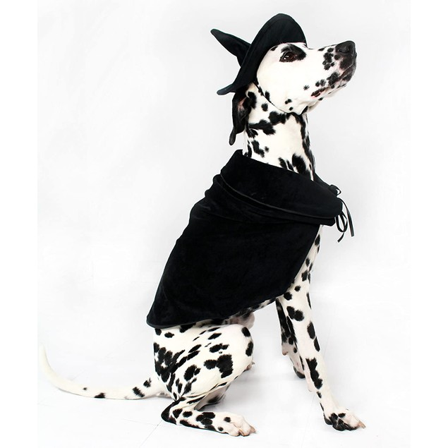 Midlee Halloween Witch Cape and Hat Dog Costume