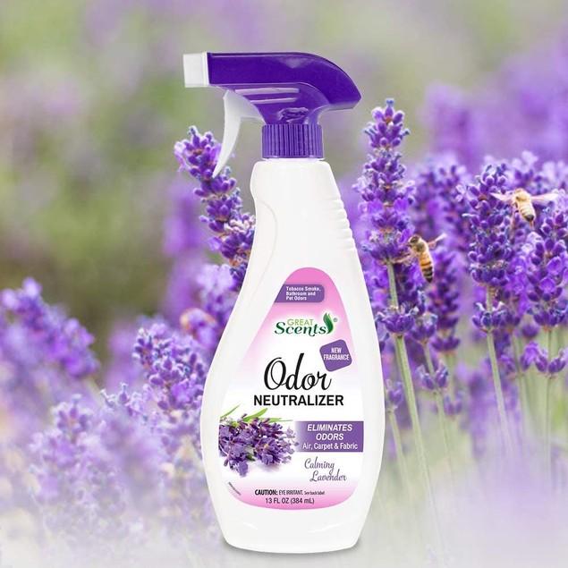 Great Scents Odor Calming Lavender Long Lasting Air Freshener Trigger Spray