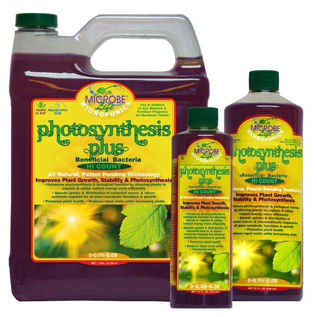 Microbe Life Photosynthesis Plus, 1 gal