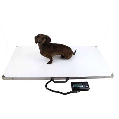 "Midlee Dog Stainless Steel Pet Scale 43""x20"", 660lb limit"
