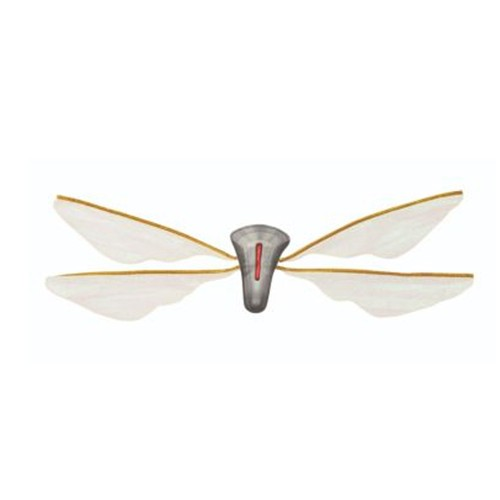 Adult Wasp Wings