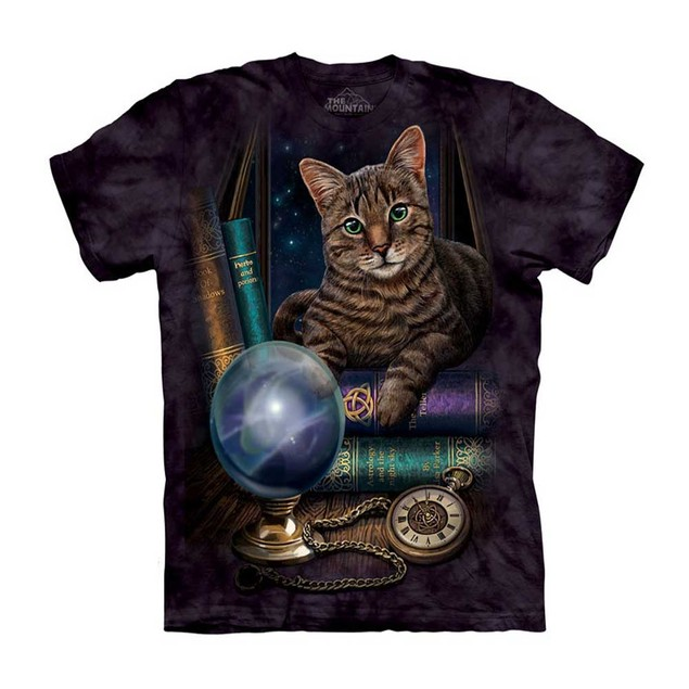 The Fortune Teller Adult T-Shirt Cat Kitty Future Mountain Crystal Ball