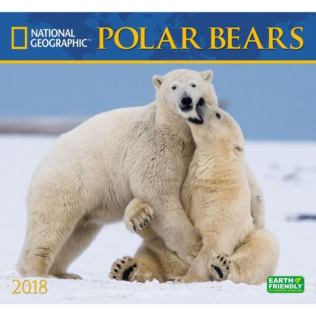 Polar Bears NG Wall Calendar, Bears by Calendars
