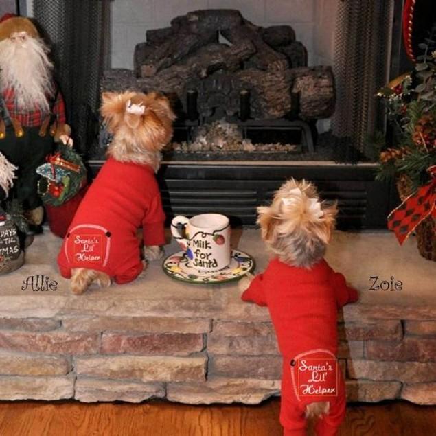 "Doggie Design ""Santa's Lil Helper"" Christmas Cotton Dog Pajamas, Medium"