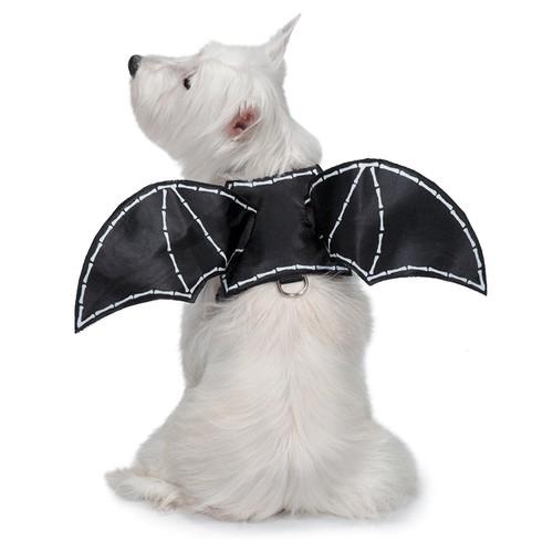 Zack & Zoey Glow-in-the-Dark Bat Wings Harness for Dogs, Medium