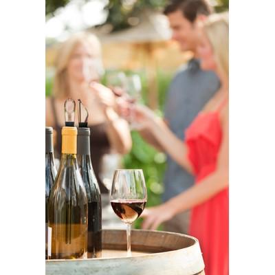 Wine Cooling Stick