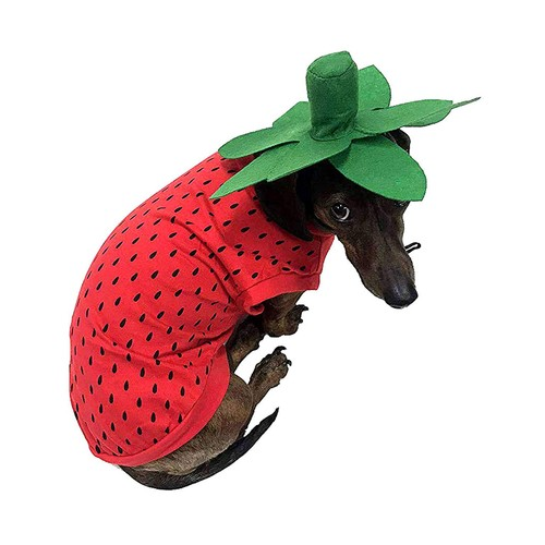 Midlee Strawberry Dog Costume (X-Large)