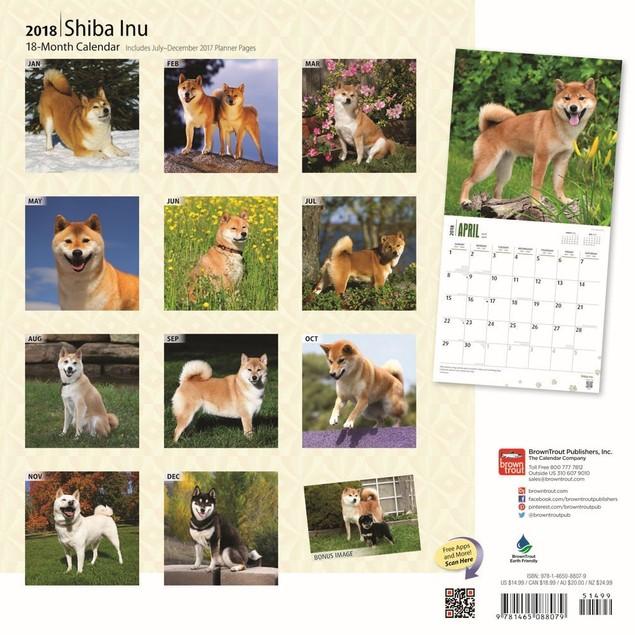 Shiba Inu Wall Calendar, Shiba Inu by Calendars