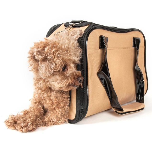 Airline Approved Mystique Fashion Pet Carrier