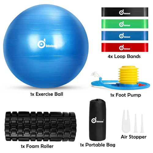 8-In-1 Exercise YOGA BALL SET Loop Bands Kit with Portable Bag