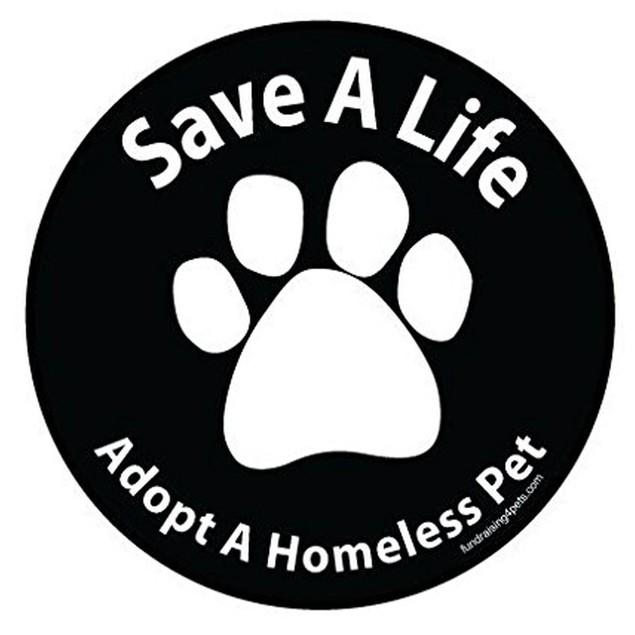 Save A Life Adopt a Homeless Pet Magnet Dog Gift Car Auto